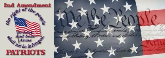logo 2nd amendment
