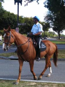 Washington Park mounted police protect Washington D.C.'s War Memorials from veterans.